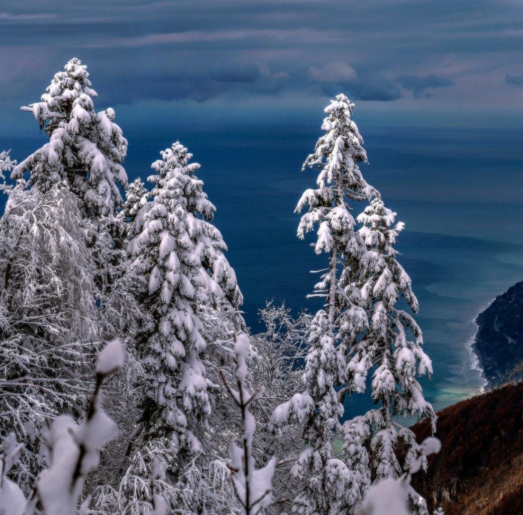 Отдых в Абхазии на Новый год